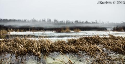 Wyse Marsh-15