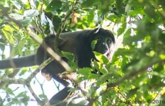 Costa Rica-37